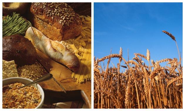 Grain1.jpg