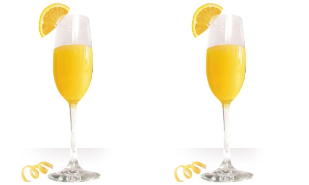 Get The Most Out Of Your Mimosa