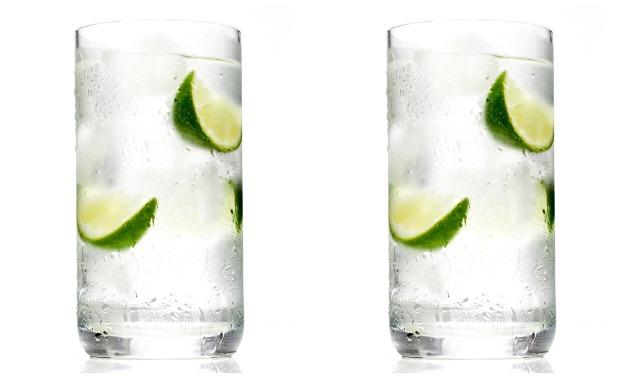 Gin & Tonic Sans Tons Of Calories