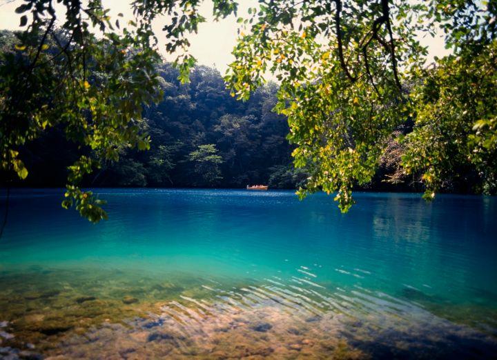 Swim in the Luminous Lagoon