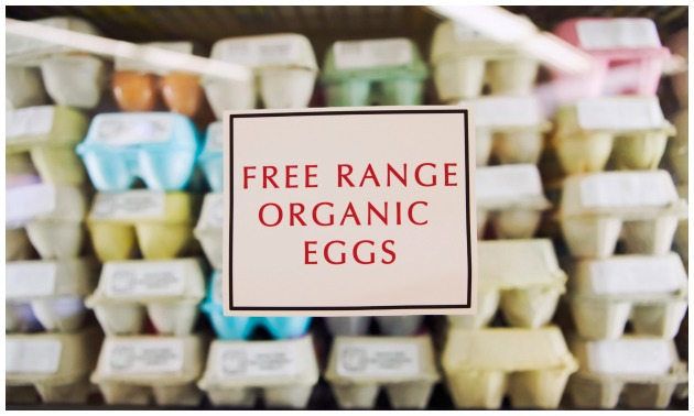 Free Range Comes With A Price