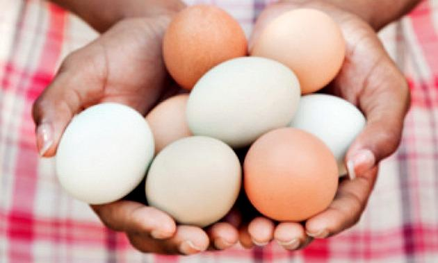 Black woman holding eggs