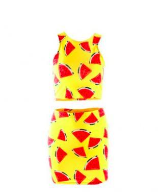 Watermelon Print Crop Top and Skirt