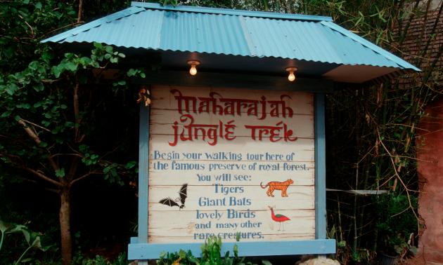 Disney Jungle Image
