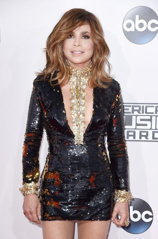 2015 American Music Awards - Arrivals
