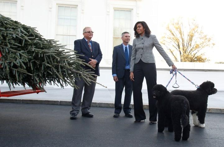 US-POLITICS-OBAMA-CHRISTMAS-TREE