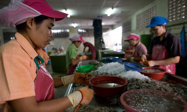 THA: Thailand's Burmese Migrant Workers Face Possible Deportation As Thailand Deadline Looms
