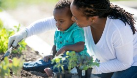 Digging and Planting Vegetables