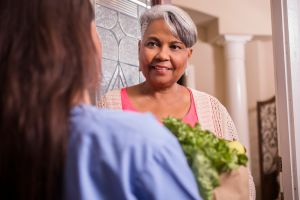Volunteerism: Woman delivers groceries to senior adult woman at home.