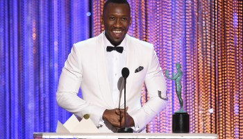 The 23rd Annual Screen Actors Guild Awards - Show