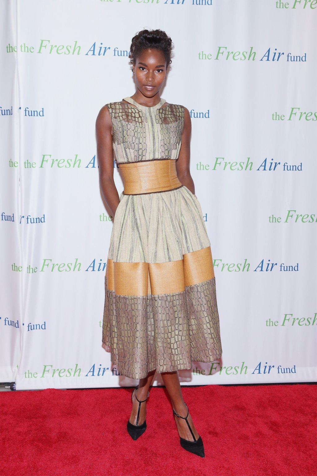 Fresh Air Fund 140th Birthday Celebration And 2016 Spring Benefit