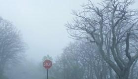 Stop sign in Shenandoah national park