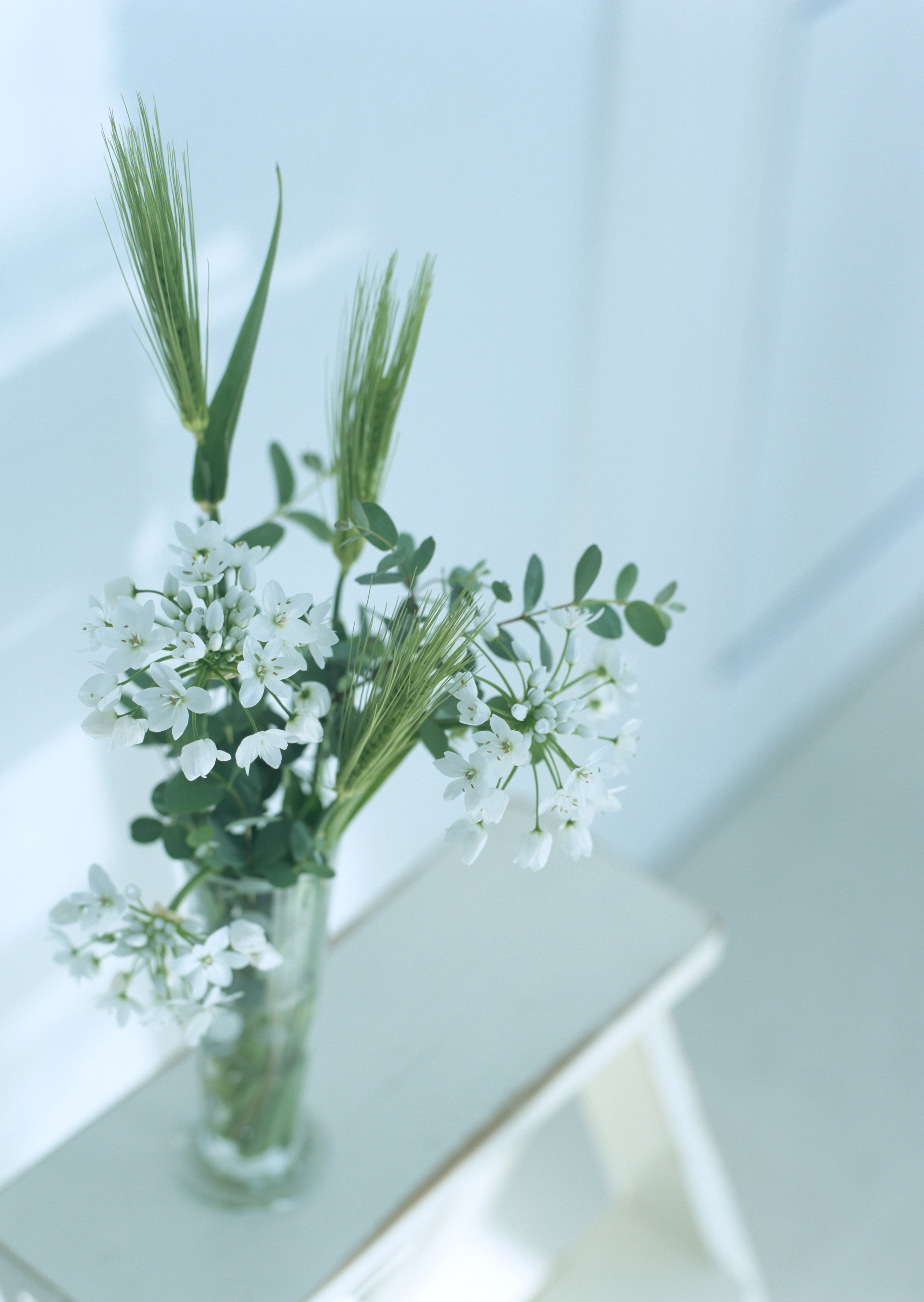 Flower arranged in a glass bowl on stool