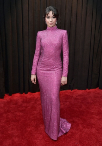 61st Annual GRAMMY Awards - Red Carpet