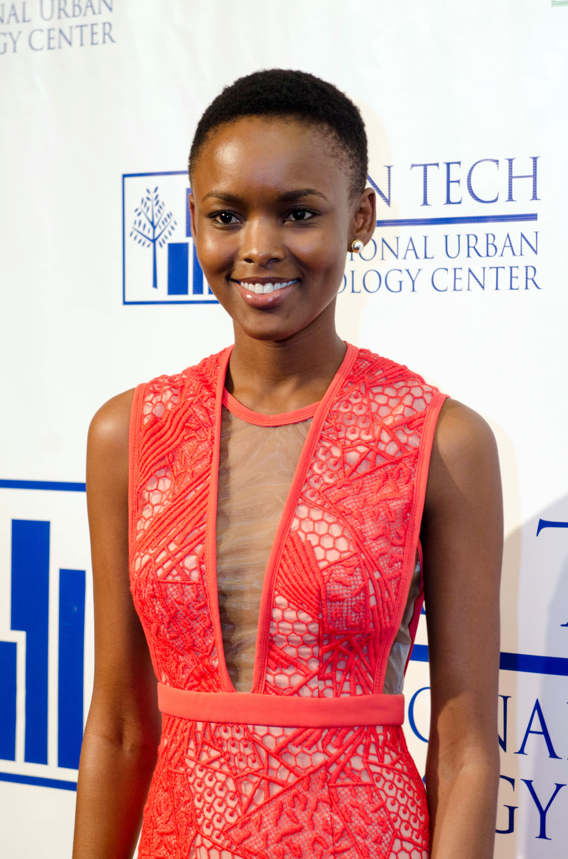 Breaking Barriers: The 20th Anniversary Of The National Urban Technology Center Gala Awards Dinner