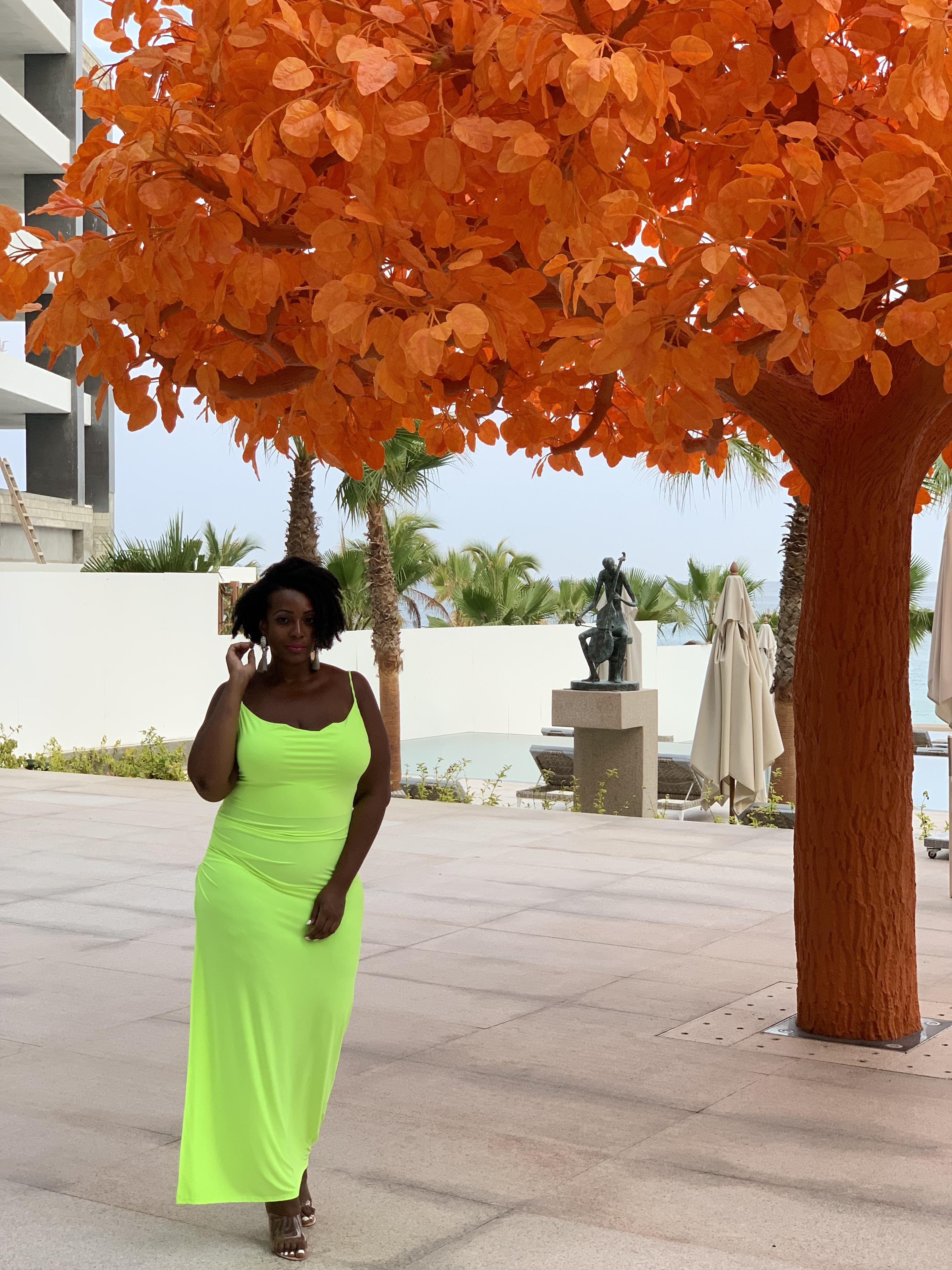 Fashion To Figure Neon Dress