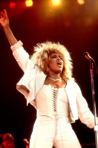 Tina Turner At The Rosemont Horizon