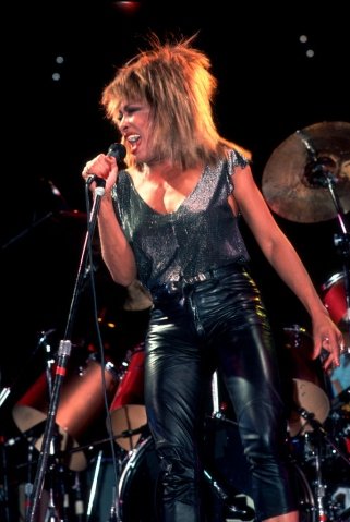 Tina Turner At The Rosemont Horizon