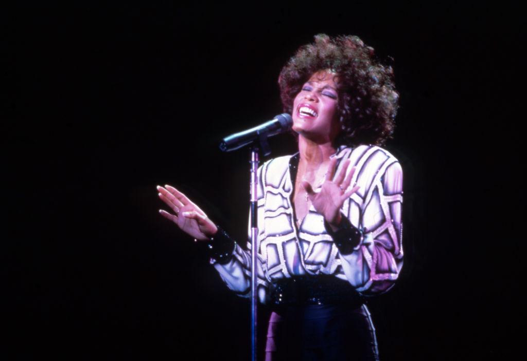 Whitney Houston In Clarkston, MI