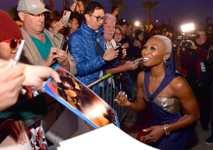 31st Annual Palm Springs International Film Festival Film Awards Gala - Red Carpet