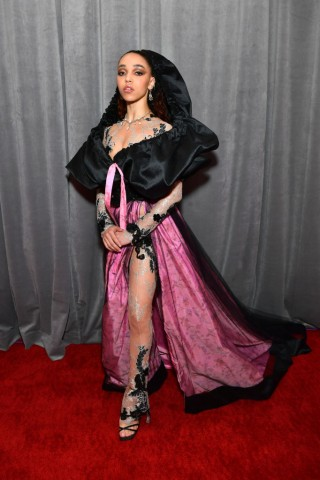 62nd Annual GRAMMY Awards – Red Carpet