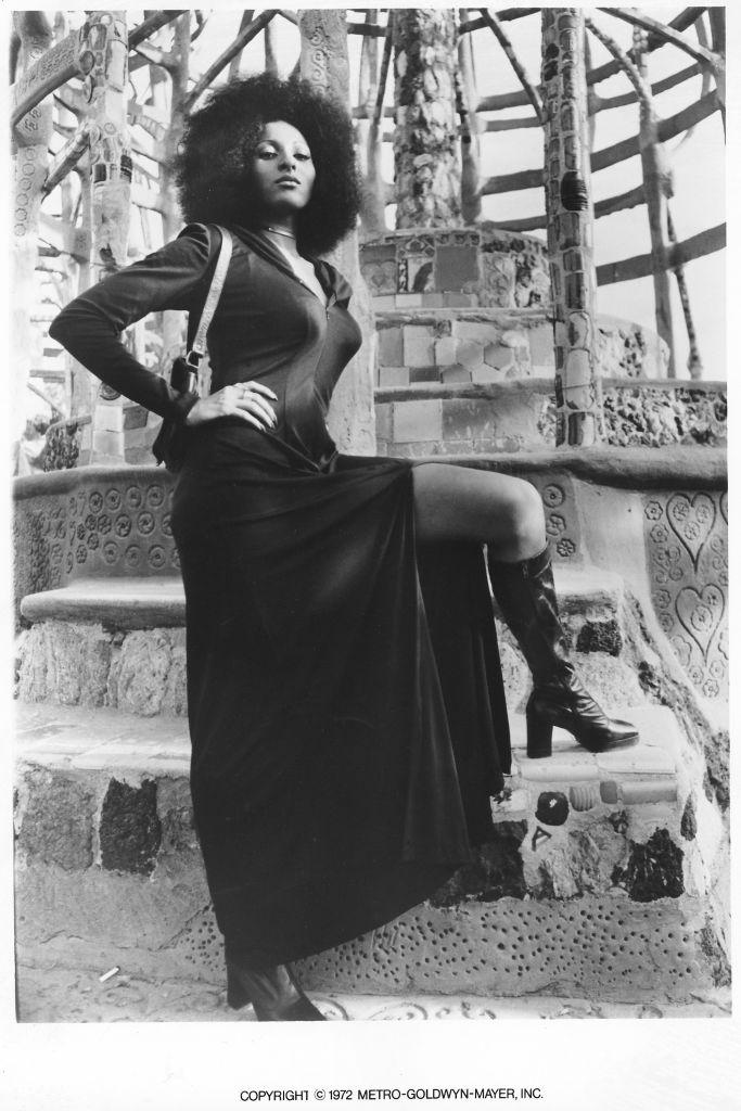 Pam Grier In 'Hit Man'
