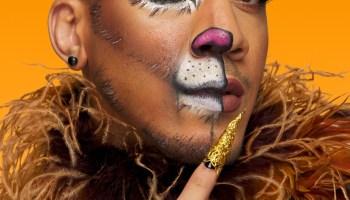 Cowardly Lion Halloween Makeup